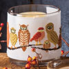 Owl & Pumpkin Candle Bands