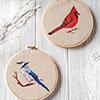 Cardianl & Blue Jay